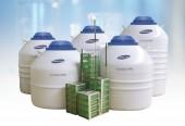 Cryorack系列 液相液氮罐