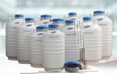Cryolab 便攜液氮罐